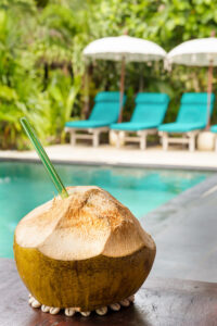 Coconut by pool